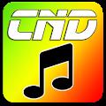 Free Web Rádio - CND - Conexão Noite Dia APK for Windows 8