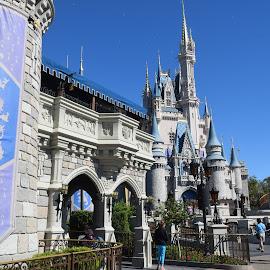 Cinderella's Castle by Keith Heinly - City,  Street & Park  Amusement Parks ( park, florida, magic kingdom, castle, disney )