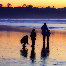 Buncha Peter Pans by Brendan Mcmenamy - Novices Only Landscapes ( pans, shadow, peter, beach, buncha )