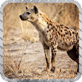 Hyenas Pack 2 wallpaper APK for Ubuntu