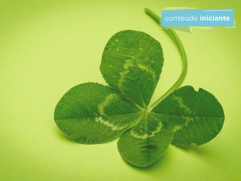 4 exemplos de sustentabilidade para a sua empresa se inspirar