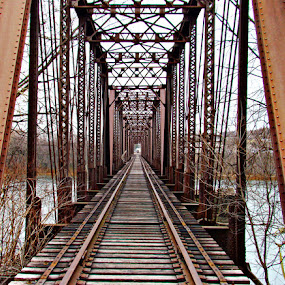 Over the River by Elaine Tweedy - Transportation Trains ( train, tressle, tracks, bridge )