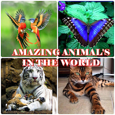AMAZING ANIMAL IN THE WORLD