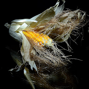 corny by Angelo Jadulco - Food & Drink Fruits & Vegetables ( crops, pwcstilllife, corn )