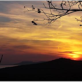 Csodálatos Naplementék by Zlatko Sarcevic - Landscapes Sunsets & Sunrises ( sunset, természet, táj,  )