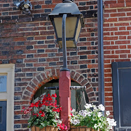 Elfreth's Alley Light Post by Eva Pastor - City,  Street & Park  Historic Districts ( elfreth's alley, light post, flowers )