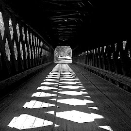by Judy Laliberte - Novices Only Objects & Still Life ( leading lines, pattern, covered bridge, b & w, light, shadows )