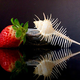 shell and strawberry by Janette Ho - Artistic Objects Still Life