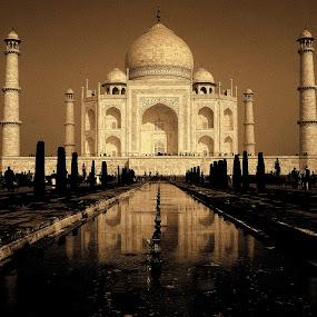 The Taj Mahal by Madhujith Venkatakrishna - Buildings & Architecture Statues & Monuments ( garyfonglandscapes, landmark, holiday photo contest, travel, photocontest,  )