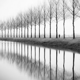 Alone by Vojkan Milosev - Landscapes Prairies, Meadows & Fields ( water, person, individual, holland, trees, reflections, alone )