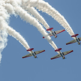 Aeroshell by Ron Malec - Transportation Airplanes