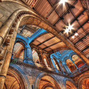 The Natural History Museum by Kain Dear - Buildings & Architecture Public & Historical ( history, tiles, hdr, columns, stone, museum, stones, historic )