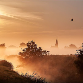 Hedvigsdal, Sweden by Jerry Kambeitz - Landscapes Prairies, Meadows & Fields ( sweden, skane, hedvigsdal, fog, scania )