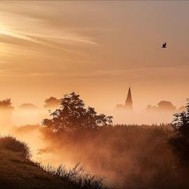 Hedvigsdal, Sweden by Jerry Kambeitz - Landscapes Prairies, Meadows & Fields ( sweden, skane, hedvigsdal, fog, scania,  )