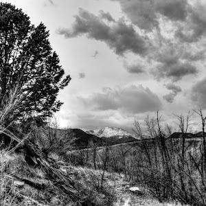 Winter_Dry.jpg
