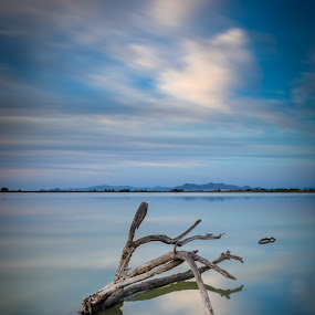Blue Mirror by Giorgos Makropoulos - Landscapes Waterscapes ( clouds, water, reflection, sea wood, sky, wood, long exposure, lake, seascape,  )