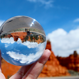 Bryce Canyon by Dipali S - Artistic Objects Glass ( cliffs, highway, colorful, erosion, vivid, sandstone, stone, rock, old west, vibrant, road, geology, nature, towers, spiritual, formations, bryce, southwest, ecology, chimney, orange, desert, park, national, canyon, tourism, windows, stacks, scenic, pinnacles, paria, roadway, landmark, southwestern, environment, red, spires, utah, color, arches, vista, summer, cathedral, western, hoodoos, tunnel )