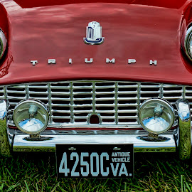 TR3 by Gene Myers - Transportation Automobiles ( shotsbygene, grill, emblem, grass, sports car, triumph, gene myers, 1960, lights, red, license plate, tr3, antique,  )