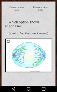 Cell Cycle Flashcards - screenshot