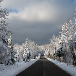 Santa Claus first turn to the right by Andrija Vrcan - Landscapes Travel ( snow, road )