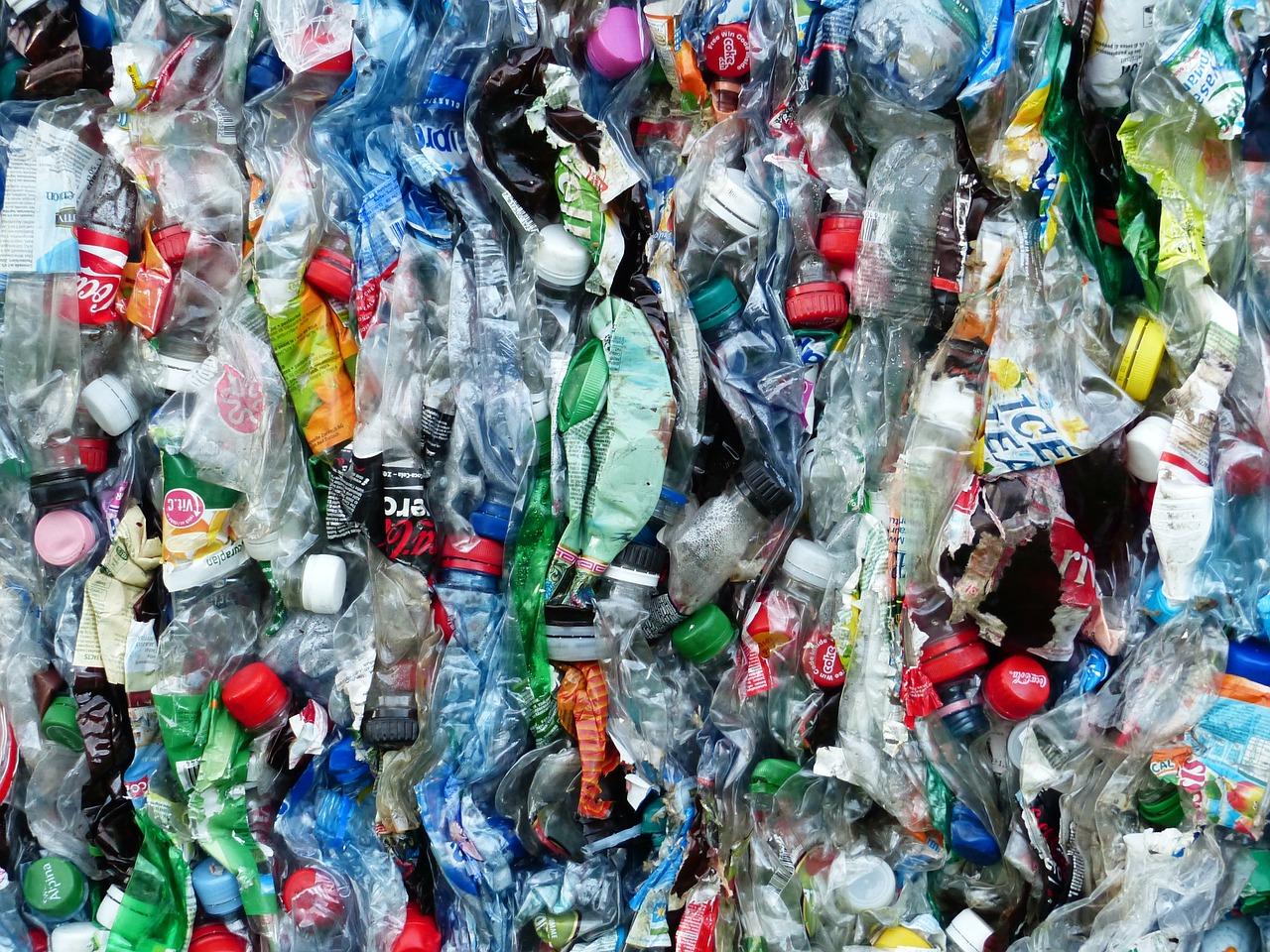 Conheça a realidade de uma cooperativa de reciclagem