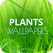 App Wallpapers with plants APK for Windows Phone