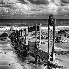 Old Groyne by Dave Godden - Landscapes Beaches ( defences, old, groyne, groynes, derelict, sea, beach, folkestone warren )