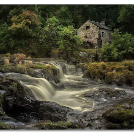 Cenarth Falss by John Smart - Landscapes Waterscapes