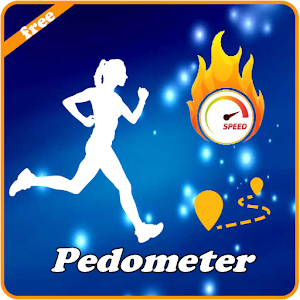 Pedometer Fitness Guide
