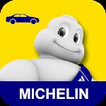 Michelin MyCar Icon