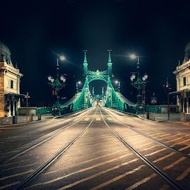Budapest. by Darijan Mihajlovic - Buildings & Architecture Bridges & Suspended Structures (  )