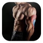 Bodybuilding & Fitness Workout 2.0 Apk