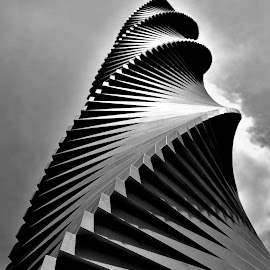 Drill Bit by Justin Lee - Black & White Objects & Still Life ( black and white, tool, no person, screw, spiralled, spiral, teeth, grooves, drill bit, sky, justin adam lee, metal, outdoors, perspective, curved )
