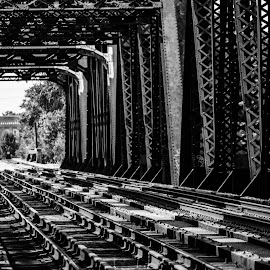 Train Bridge by Charles Shope - Buildings & Architecture Bridges & Suspended Structures ( natural light, black and white, outdoor, train, tracks, bridge, steel, bridges )