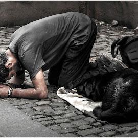 by Darko Kordic - City,  Street & Park  Street Scenes
