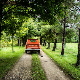 going down the lane  by Greg Sommer - Transportation Automobiles