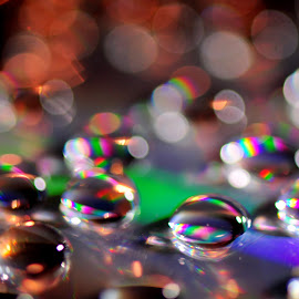 colored wateerdrops by Paul Wante - Abstract Water Drops & Splashes ( abstract, macro, colored, waterdrops, cd )