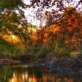 Reflections by Jolene Erickson - Landscapes Waterscapes ( reflection, colorful, change, fall, trees )
