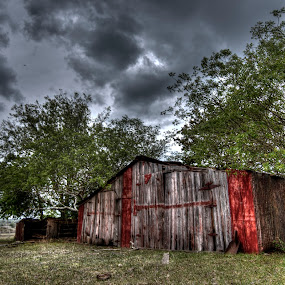 Shelter by Will Cardoso - Buildings & Architecture Other Exteriors ( field, old, barn, shelter, wood, texas, shiner, abandoned )