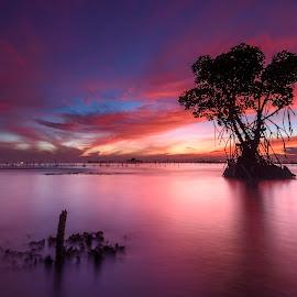 cetaaarr by Rocky Jaya - Landscapes Waterscapes