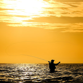 Fly fishing in Ningaloo at sunset by Clarissa Human - Sports & Fitness Other Sports ( silhouette, sunset, hobby, sport, ocean, fishing, fisherman, fly fishing,  )