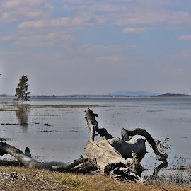 by Jeff Abel - Landscapes Waterscapes