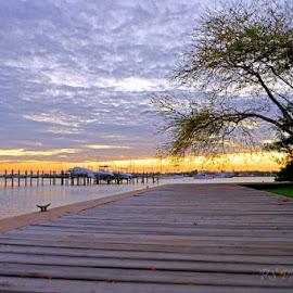 Stuart sunset  by Pam Kissner Sheedy - Landscapes Sunsets & Sunrises ( clouds, mangroves, florida, sunset, o, pier, dock )