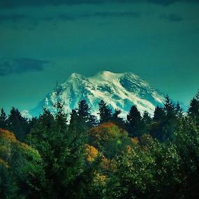 rainier by Lavonne Ripley - Landscapes Mountains & Hills