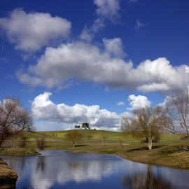 The Pond by Charles Paschal - Landscapes Cloud Formations