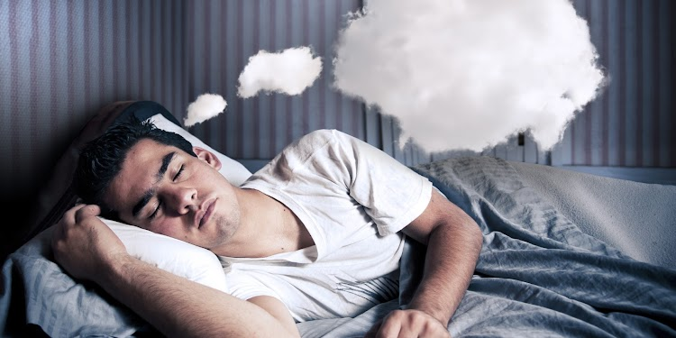 Why do we sleep and dream? features of our brain