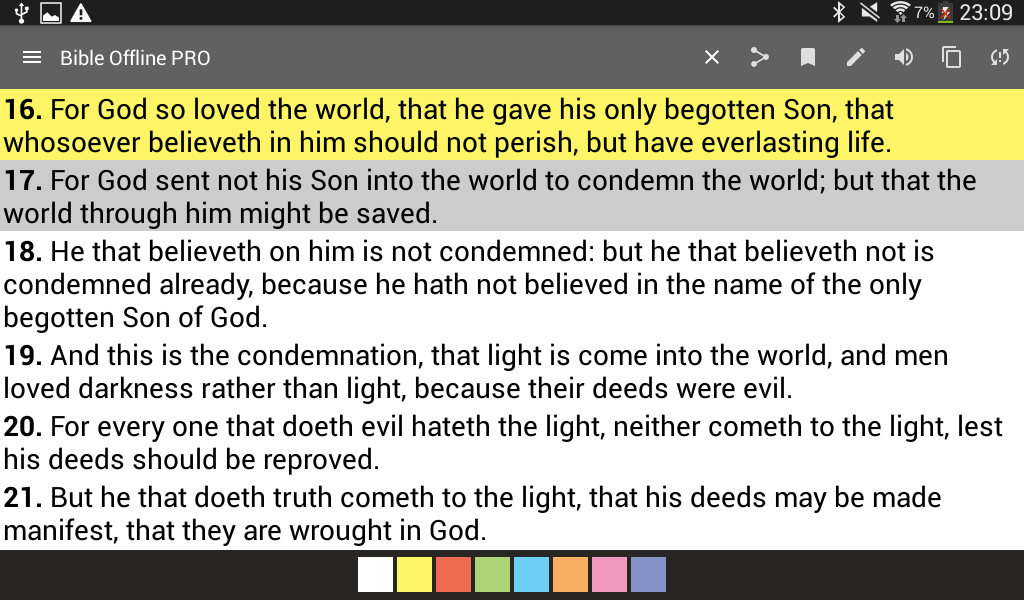Bible Offline PRO Screenshot 17
