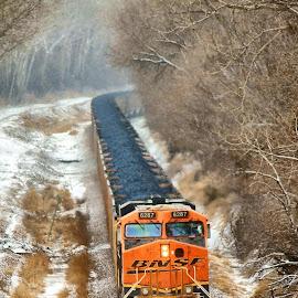 Winter Train by Bonnie Burgeson - Transportation Trains (  )
