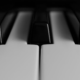 Piano by Cosmin Andrei - Artistic Objects Musical Instruments ( music, piano, clasic, instrument )