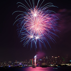 by Brianne Toma - Public Holidays July 4th ( san diego, skyline, purple, blue, four of july, point loma, fireworks, pink, long exposure, night, point loma naval base, light )